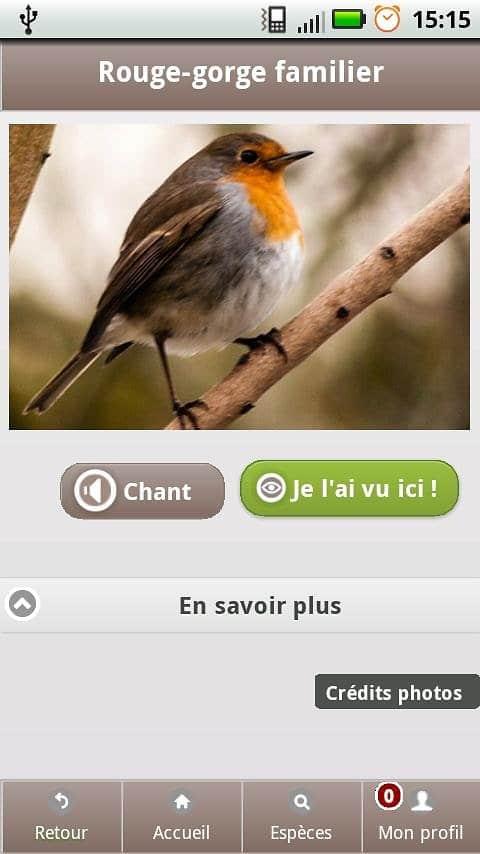 ecobalade oiseaux