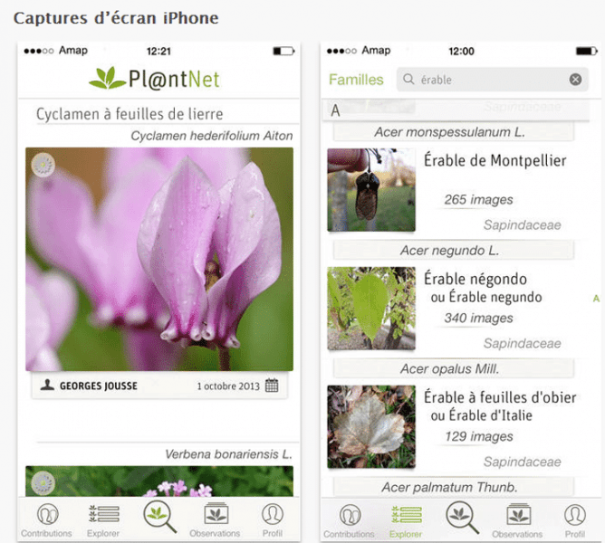 Plantnet application iphone