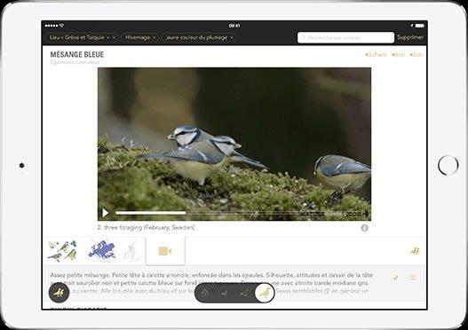 Le Guide Ornitho, les vidéos en achats intégrés