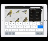 Le Guide Ornitho, une application pour identifier les oiseaux