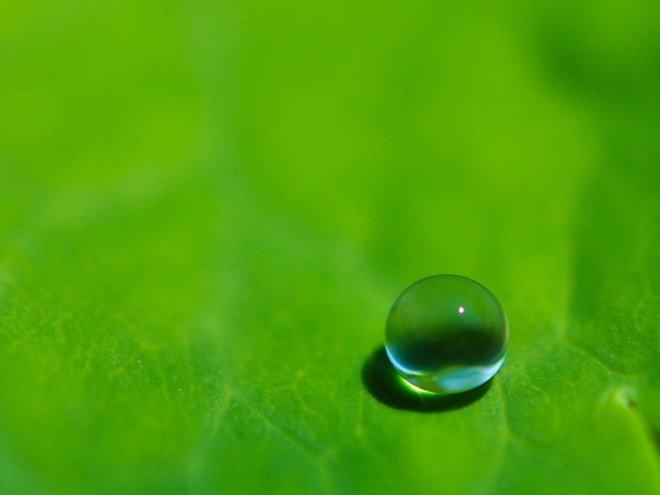 Goutte cristal nature